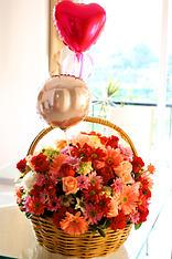 Paraiso de flores