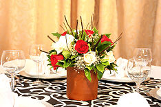 Roses Plant