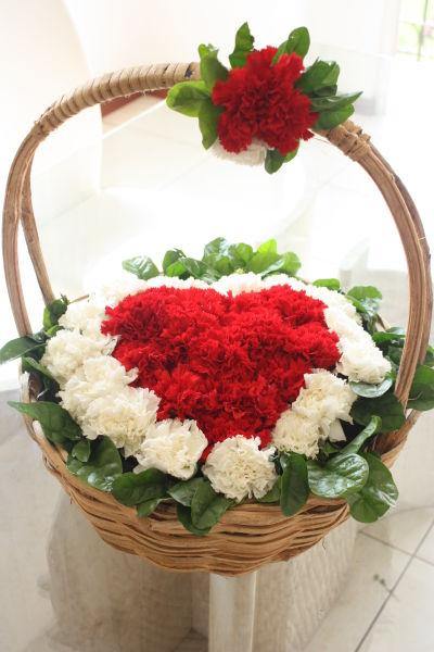 nombre corazon de clavel código 1245 increible corazon de claveles un